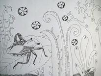Wanze, Käfer, Pflanzen, Zeichnungen