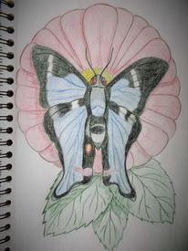 Frühling, Blumen, Schmetterling, Zeichnung