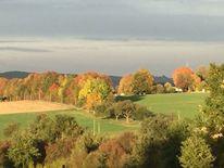 Baum, Herbst, Landschaft, Fotografie