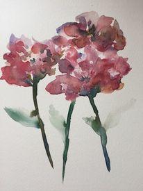 Blumen, Mohn, Sommer, Frische