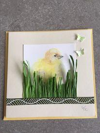 Frühling, Ostern, Glückwunschkarte, Küken