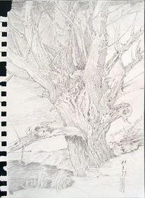 Baum, Landschaft, Natur, Zeichnung