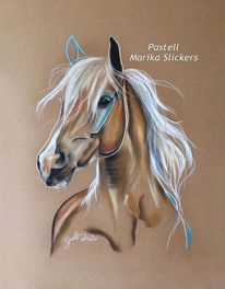 Allgäuer, Farben, Pferde, Magic horse