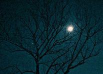 Nacht, Mond, Fotografie