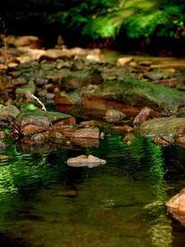 Natur, Wasser, Steine, Fotografie