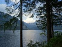 See, Natur, Baum, Fotografie