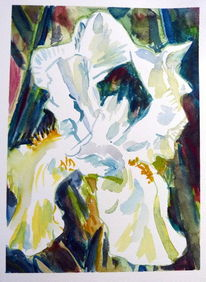 Malerei, Blumen, Weiße iris blüte, Natur