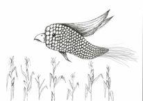 Vogel, Meise, Mais, Maiskolben