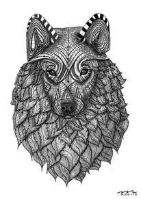 Wolf, Tusche, Bleistiftzeichnung, Zeichnung