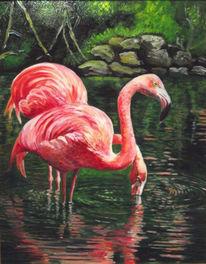 Vogel, Wasser, Tiere, Malerei