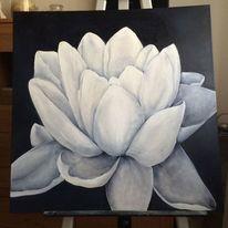 Natur, Seerose schwarz, Blumen, Weiß