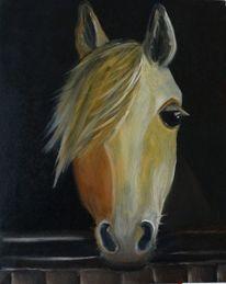 Pferde, Stall, Müde, Malerei