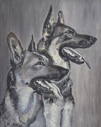 Hundeköpfe, Hundeprofil, Schäferhunde, Zwei hunde