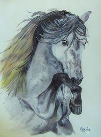 Pferdekopf, Mähne, Bein, Huf