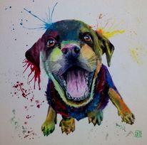 Bunt, Welpe, Hund, Malerei