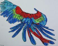 Tiere, Papagei, Zeichnungen,