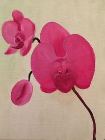 Pink, Blumen, Orchidee, Ölmalerei