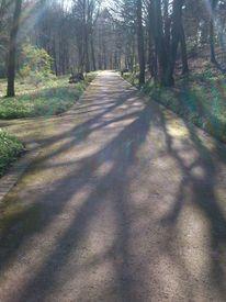 Licht, Landschaft, Schatten, Fotografie
