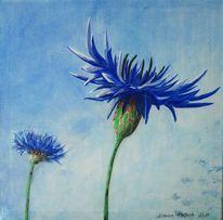 Kornblumen, Blumen, Blau, Natur