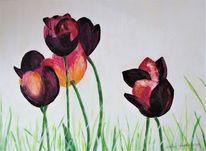 Blumen, Tulpen, Natur, Narure
