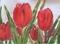 Pflanzen, Tulpen, Rot, Blumen