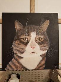 Katze, Figural, Fell, Acrylmalerei