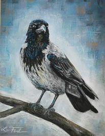 Aaskrähe, Vogel, Pastellmalerei, Zeichnungen