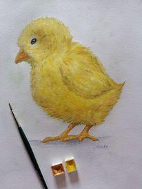 Frühling, Huhn, Küken, Gelb