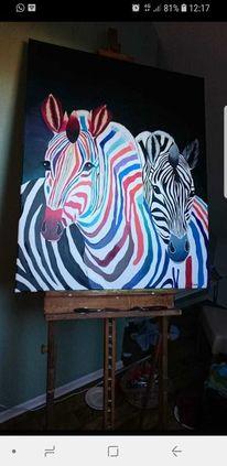 Schwarz, Weiß, Bunt, Zebrastreifen
