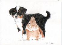 Buntstiftzeichnung, Hund, Kaninchen, Zeichnungen