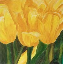Schatten, Tulpen, Gelb, Licht