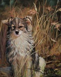 Hund, Natur, Ölmalerei, Malerei