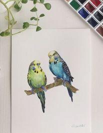 Vogel, Aquarellmalerei, Aquarell