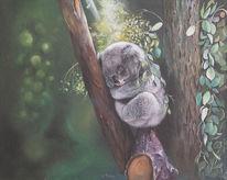 Zweig, Tiere, Äste, Koala