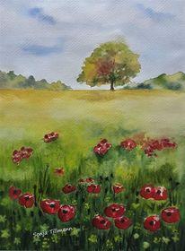 Aquarell auf papier, Landschaft, Malerei, Mohnblumen