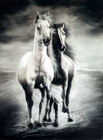 Schwarz, Weiß, Pferde, Pastells