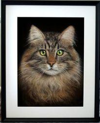 Pastellmalerei, Zeichnung, Katze, Liebe