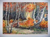 Rhön, Laub, Herbst, Weg