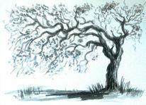 Landschaft, Eichen, Schwarz, Zeichnung