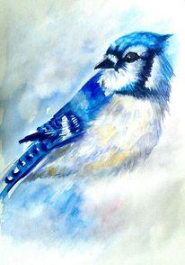 Portrait, Blau, Tierportrait, Natur
