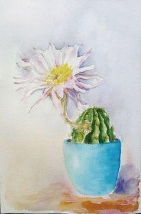 Pflanzen, Aquarellmalerei, Stillleben, Kaktus