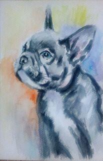 Tiere, Tiermalerei, Hundeblick, Grau