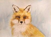 Aquarellmalerei, Tiere, Tierportrait, Fuchs