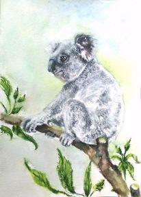 Tierportrait, Aquarellmalerei, Tiere, Eukalyptusbaum