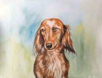 Hund, Aquarellmalerei, Tierportrait, Hundeportrait