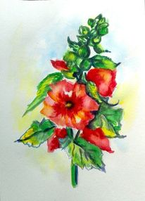 Pflanzen, Aquarell pflanzen, Sommer, Aquarellmalerei