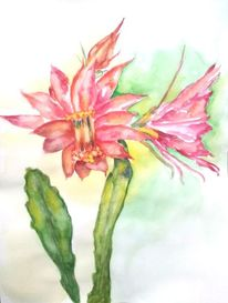 Blumen, Pflanzen, Aquarellmalerei, Kaktus