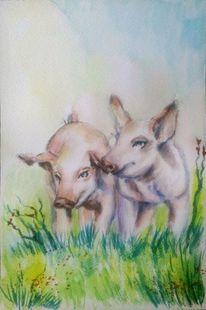 Schwein, Tiermalerei, Wiese, Sommer