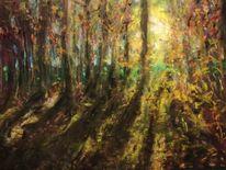 Sonne, Unterholz, Wald, Schatten