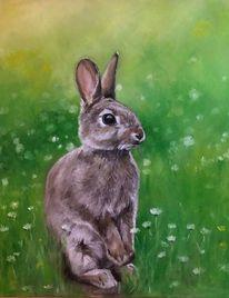 Hase, Ölmalerei, Tiere, Malerei